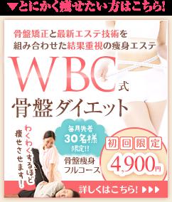 PBD式骨盤ダイエット 初回限定3,980円